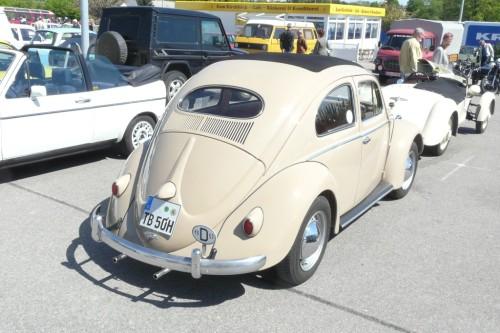 Käfer mit Ovalfester