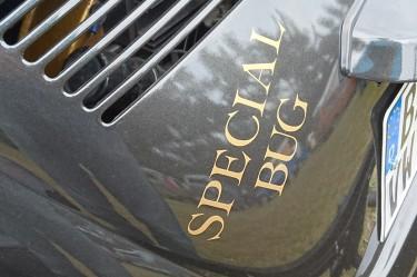 Motorklappenbeschriftung Special Bug